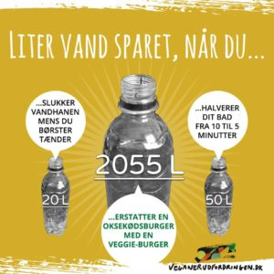 Veganer Udfordringen - så mange liter vand sparet, når du ...