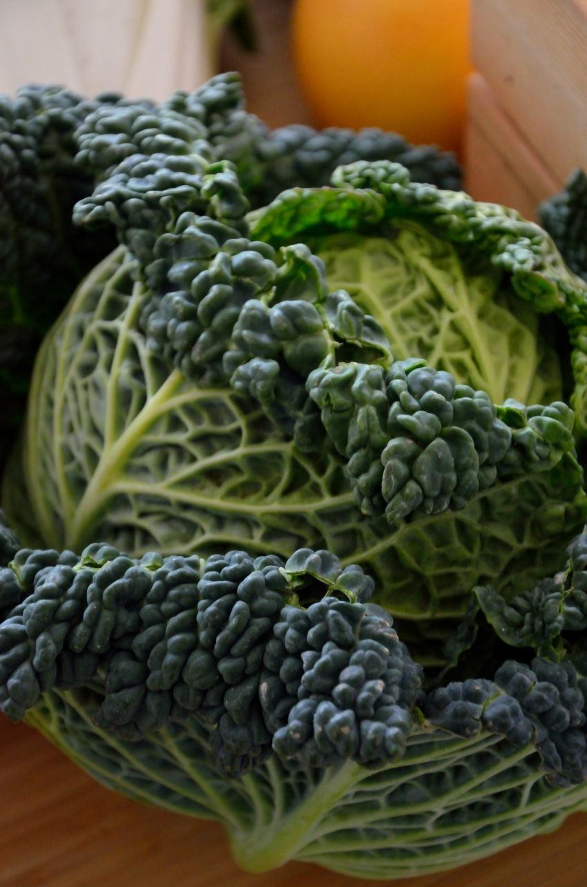 Artikel: sådan får du calcium som veganer